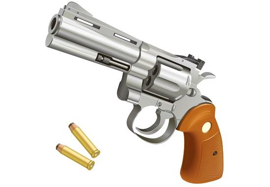 刑事課 薬物銃器対策係の仕事